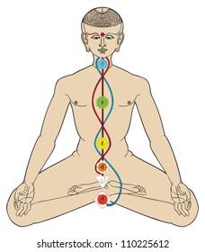 Wellness symbols