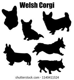 Welsh corgi dog vector icons and silhouettes. Set of illustrations in different poses.