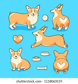 Welsh corgi dog, vector illustration set with a heart