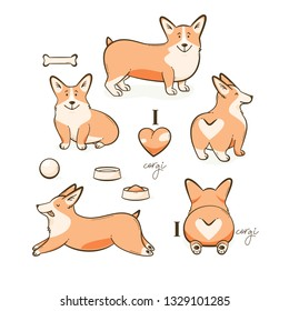Welsh corgi dog, vector illustration set with a heart
