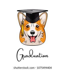 Welsh corgi graduate. Graduation cap hat. Dog portrait. Vector illustration