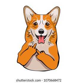 Welsh Corgi. Middle finger gesture. Dog breed portrait. Vector illustration
