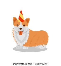 Welsh corgi pedigree dog in party hat, cute puppy pet character vector Illustration on a white background