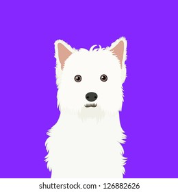 West highland white terrier, The buddy dog