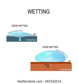 Wetting and Surface tension for water. hydrophilic and hydrophobic surface. Poor wetting and good wetting of the surface. Contact Angle. physics science education