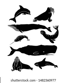 Whale, dolphin and seal vector poster. Cetacean black silhouette drawing. Sea animals set.