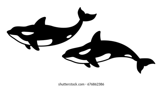 whale. killer whale. shark. dolphin illustration vector