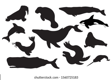Whale and seal silhouette vector illustration. Set of marine mammals. Ocean animals: killer, blue, sperm and humpback whale, walrus, seal, narwhal, dolphin, manatee, leopard seal.