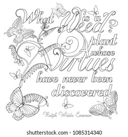 What is a weed? Zentangle Saying from Ralf Waldo Emerson. Doodle vector design for coloring book