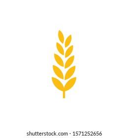 Wheat and barley ears vector illustration