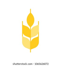 Wheat or barley icon, flat design vector
