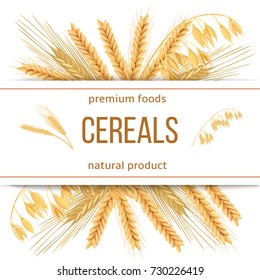 Wheat, barley, oat and rye. 3d icon vector set. Four cereals grains and ears with text premium foods, natural product. Horizontal label. seeds and plants. For cooking, bakery, tags, labels, textile