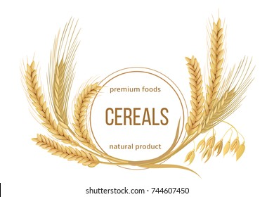 Wheat, barley, oat and rye set. Four cereals spikes with ears, sheaf and text premium foods, natural product. 3d icon vector. Round label. For design, cooking, bakery, tags, labels, textile