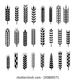 Wheat ear icon set, leaves icons, graphic design elements, black isolated on white background, vector illustration.