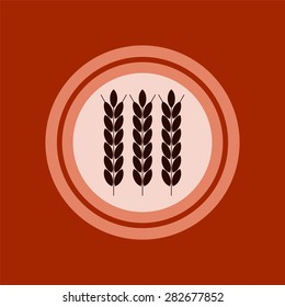 wheat ears, agribusiness, agrobusiness. Plate concept.