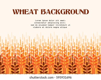 Wheat ears background. Agriculture background. Wheat field
