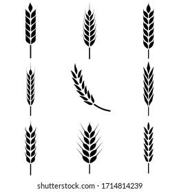 Wheat ears icon, logo isolated on white background