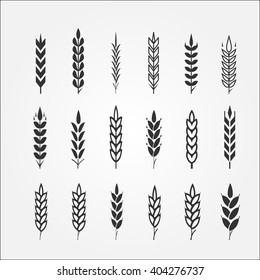 Wheat ears for logo design