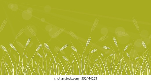 Wheat field line border on blurred light green background.