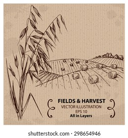 Wheat Fields with Harvest and Oats. Hand drawn vector Illustration