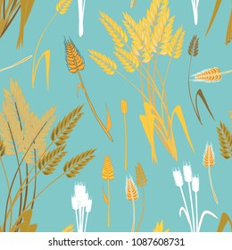 Wheat grains seamless pattern. vector illustration on turquoise background