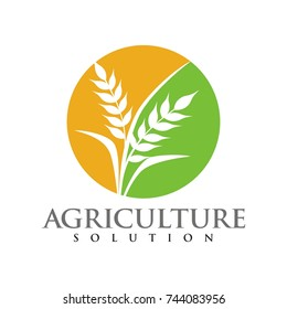 Wheat logo for agriculture industry design template vector