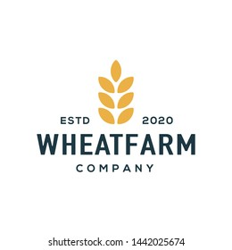 Wheat logo design vector. Universal wheat logo.