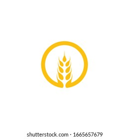 Wheat Logo Template vector symbol nature