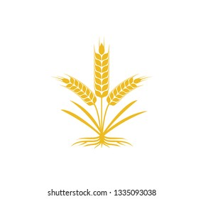 wheat nettle with strong root vector icon logo design template