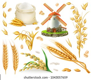 Wheat, rice, oats, barley, flour, mill, grain. 3d realistic vector icon set