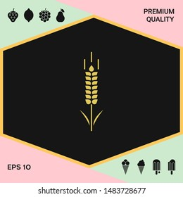 Wheat or rye spikelet symbol. Graphic elements for your design