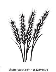 Wheat vector plant grain icon illustration. Wheat field harvest design agriculture.