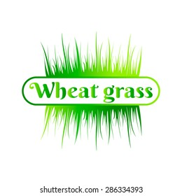 Wheatgrass green juice. Logo, banner, frame for business, the store site for clean super food or paleodieta on a white background. Vector illustration