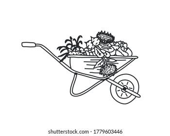 Wheelbarrow for the garden icon. Vector illustration of a garden wheelbarrow for plants. Hand drawn wheelbarrow for the garden.Wheelbarrow with the harvest. Cabbage, sunflower, carrot, beet