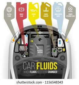 Which fluids need to be changed under the hood of the car?
