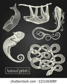 White animal illustrations on the blackboard background