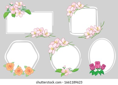 white backgrounds with apple tree flowers and roses - floral vector frames