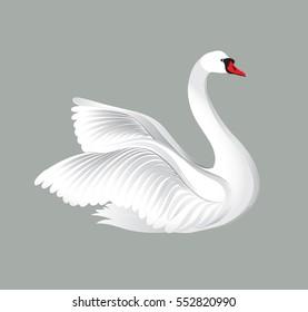 White bird isolated over white background. Swan illustration