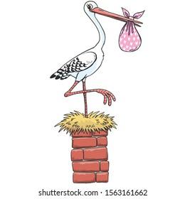 white bird stork on the chimney holds the bind