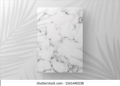 White Blank Rectangle marble template in white background on top view. decorated by shadow leaves. for new product, promotion sale, banner, presentation, cosmetic, offer. copy space. Realistic Vector