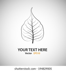 White Bodhi Leaf - vector