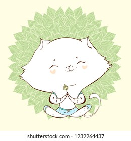White cat.Cute cat with yoga pases