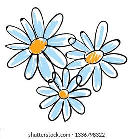 White chamomile flowers vector illustration on white background.