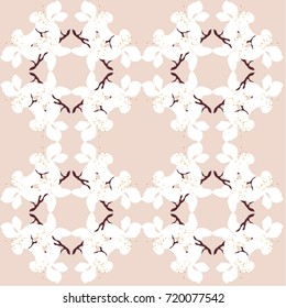 White cherry blossoms on pink