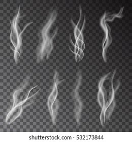 White cigarette smoke isolated on transparent background.  Steam  from a cup of coffee or  tea.  Realistic  vector illustration.