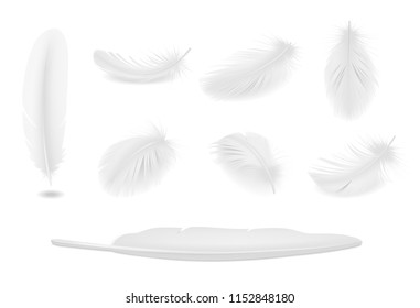 White clean bird feathers realistic set isolated vector illustration