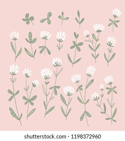 White clover flowers isolated on the pink  background.  Vector floral set. Cute hand-drawn natural elements for design cards and invitations.