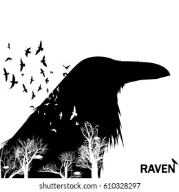 The white colored trees in a bird with raven lettering vector illustration.
