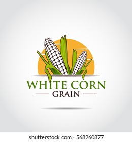 White Corn. Agriculture Logo template. Vector Illustrator eps.10