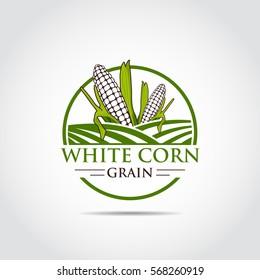 White Corn. Agriculture Logo template. Vector Illustrator eps.10
